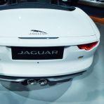 jaguar p1030002